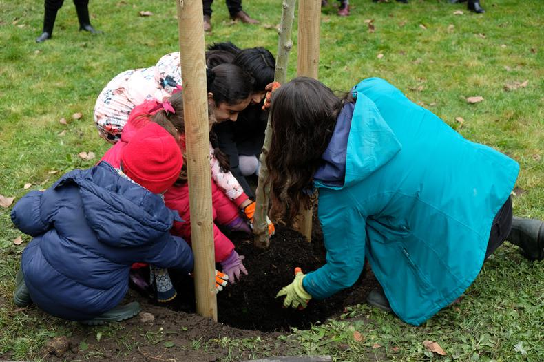 Planting our one millionth tree: a Trees for Cities milestone