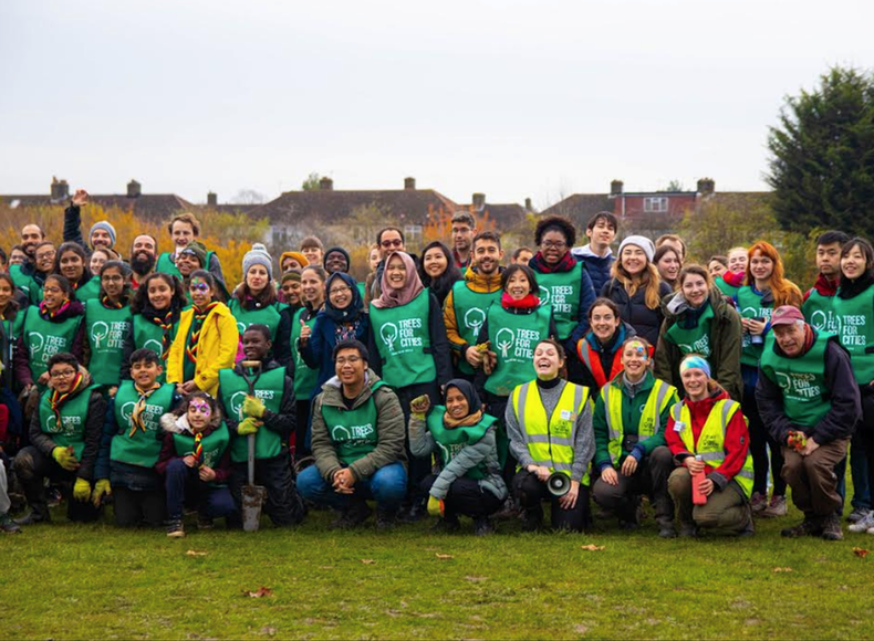 Our 2019/20 tree planting season in numbers