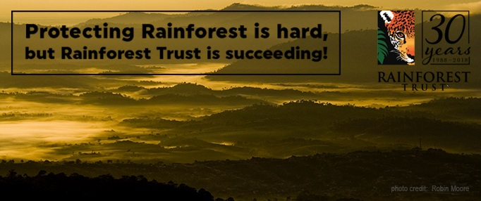 How We Protect Rainforest
