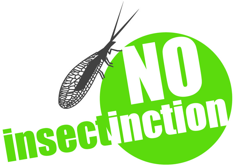 No Insectinction – how to solve the insect declines crisis