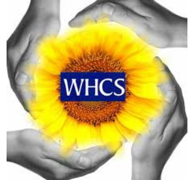 Wirral Holistic Care Serices -Therapeutic Cancer Care