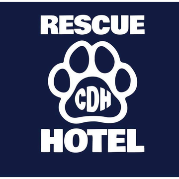 Cardiff Dogs Home, The Rescue Hotel
