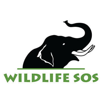 Wildlife SOS (elephants)