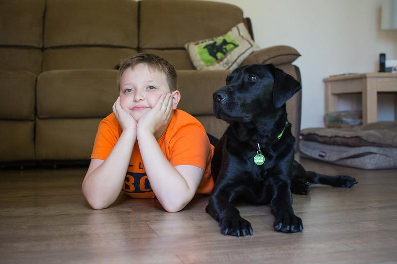 Communicating with your dog - how to strengthen your bond