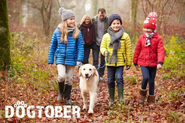 October is Dogtober!