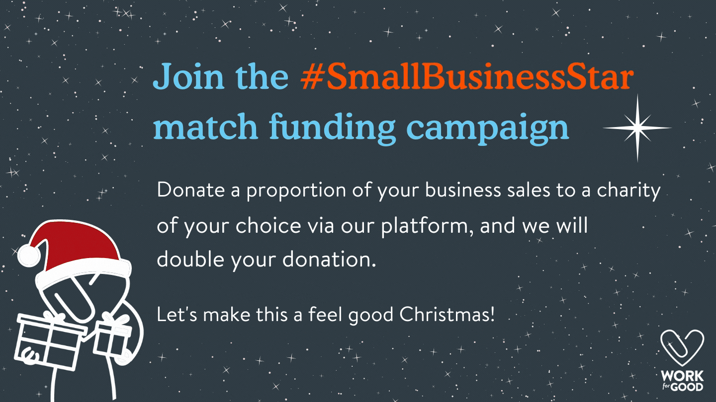 Small business Star campaign.png
